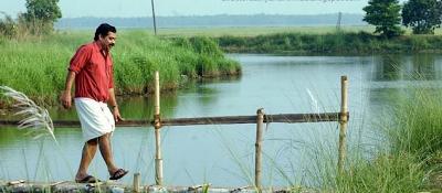 இளையராஜா  & சத்யன் அந்திக்காடு – இன்னொரு வெற்றிக கூட்டணி