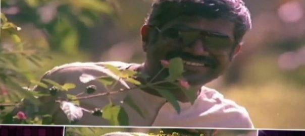 இசையமைப்பாளர் கங்கை அமரன் – பாகம் இரண்டு